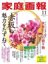 《家庭畫報》日本優雅女裝時尚雜志2019年11月號